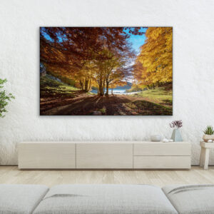 Autumn morning Domus photographic prints for sale online