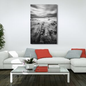 Campiechos waves prints buy online