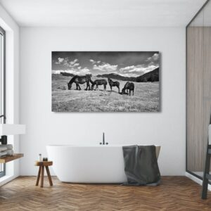 Horse photographic luxury prints for sale - buy online